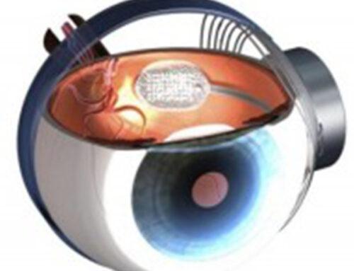 La visione artificiale: una speranza concreta per gli ipovedenti